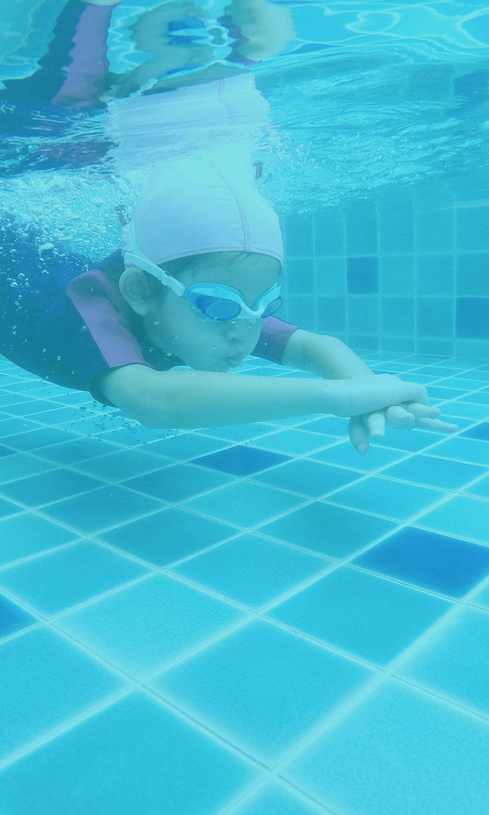 Saci Professional piscine